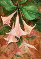 Peachy Bells by JoannaBromley