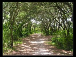 Paved Path by oolostentitystock