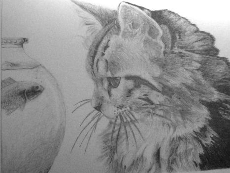 sketching of a kitty by iloovedoggies