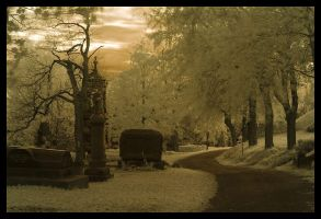 Cemetery in October by pirbernard