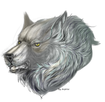 Wolf by Arjello