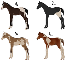 Painted Foals - Adoptables by Baskia