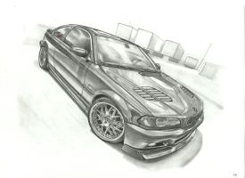Chase's BMW by przemus