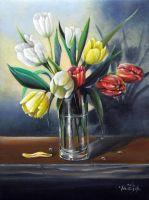 Tulips by chebot