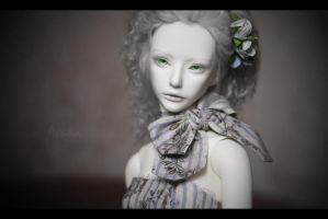 Shadow by Asuka-d