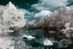 365/29: Blanco Shoals infrared by jblaschke
