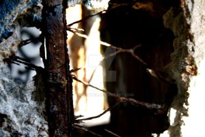 Rusted Cage by RichGinter