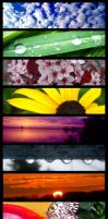 Photography Collage by Rainbow826