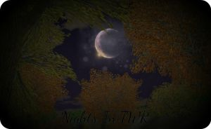 Nights In TWR by Azielle10