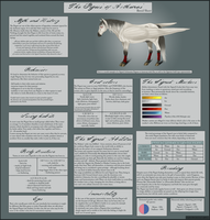 Arthanaian Pegasi breed sheet by KathyKnodoff