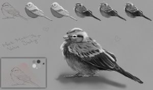 Mark Making Value Study Sparrow Fremsley by missimoinsane