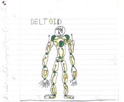 deltoid by toybox23