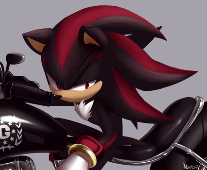 Shadow by Myly14