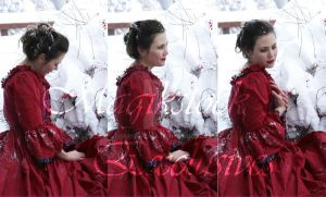 rose red portrait set by magikstock
