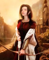 Arin Ross. Archer by push-pulse