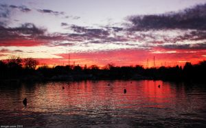Eastport Sunset by withlovexoxo