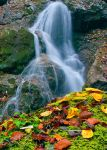 Autumn at waterfall by lica20