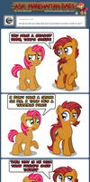 Ask Manehattan Babs #45 by wildtiel
