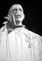 WIP Voldy by Lyvyan