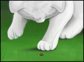 Ladybug Ladybug... Wanna Play? by Paramnesia
