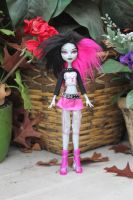 Gray custom monster high doll by rainbow1977