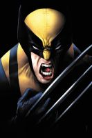 Wolvie growl by JPRart