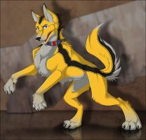 BumbleDog - Example by Lizkay