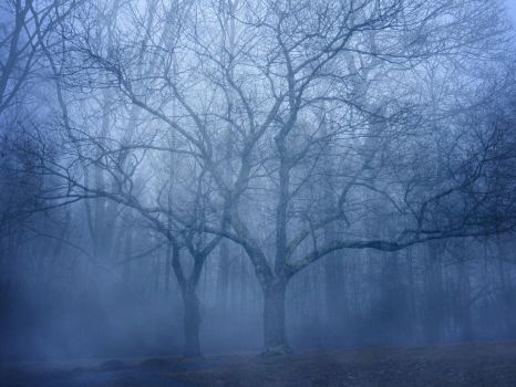 Premade Background 019 by FP-Digital-Art