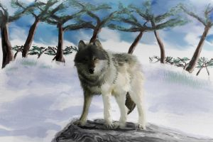 Canis Lupus, with background ~ by cha4os
