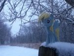 Derpy in the Snow (Pic 4) by zacorasfollower