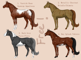Natural Horse Adopts by Filly8