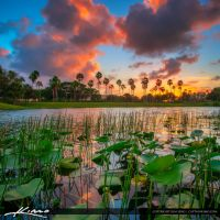 Sunset-at-Lake-Palm-Beach-Gardens by CaptainKimo