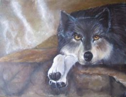 Wolf oil paint complete by DrewTheWolf