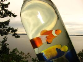 Trapped in a bottle by Lafire