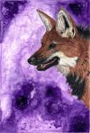 Maned Wolf by HonestAnxiety