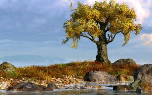 Lone Tree by a Stream by deskridge