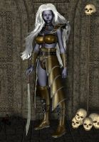 Warrior Drow by spiritsilver