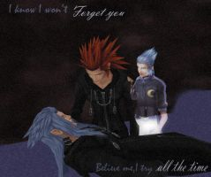 I won't forget you by Roxaoleen