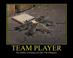 Team Player Motivational Poster by DaVinci41