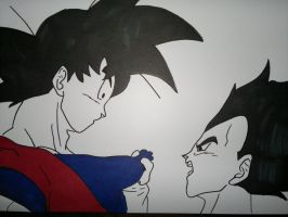 Goku and Vegeta by supervegita