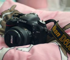 New camera by lieveheersbeestje
