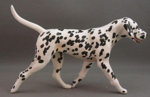 Dalmatian by Tephra76