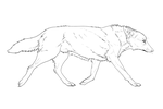 Free Wolf Lineart by Serphire
