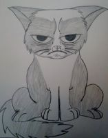 Grumpy Cat by friesianloverl2K