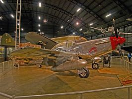 P-51D Mustang-hdr by Daveshu88