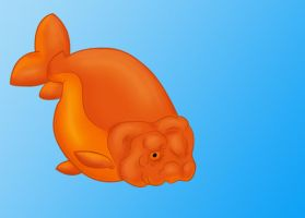 Ranchu goldfish by Wolfbird
