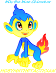 TIMMY KOOPA POKEMON : NILS THE BLUE CHIMCHAR by HOBYMIITHETACTICIAN