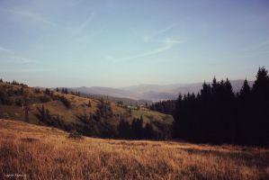 Carpathians, 2009 by Wolf-X-Parade