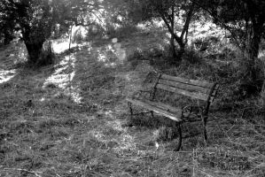 Lonely on a bench by smaccks