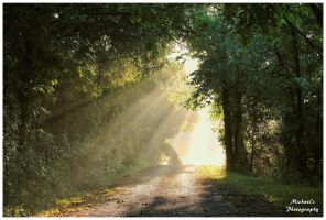 The Path Into The Light by TheMan268